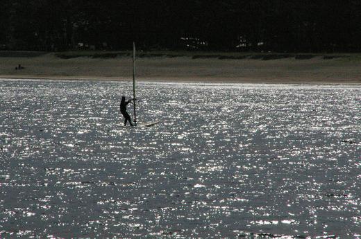 海 ウィンドサーフィン.jpg