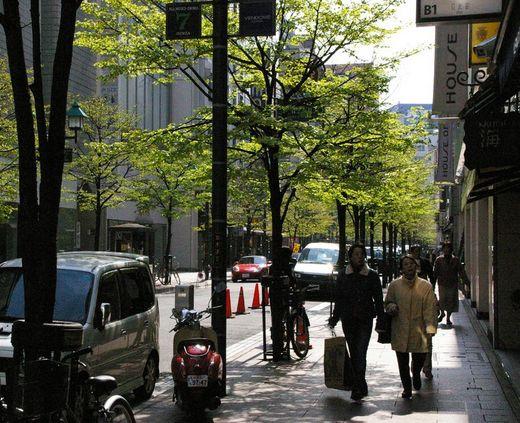 並木通り.jpg